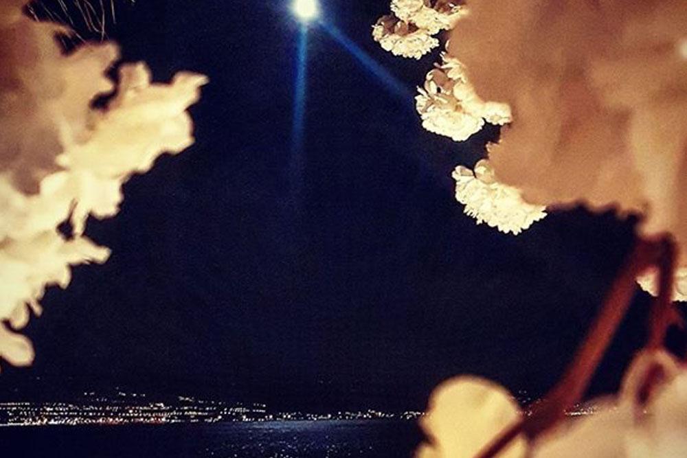luna specchiata sul mare sushi beach interior design district en rose